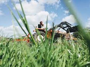 traktor ibe.jpg