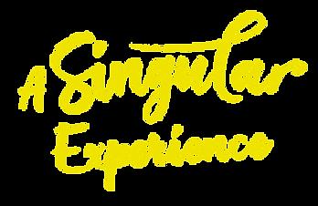 a-singular-exp.png