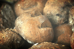 Pan de Cacao