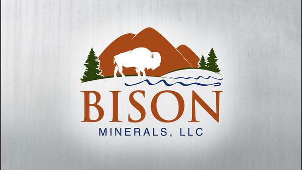 Bison Logo Design