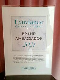 Brand ambassador.jpg
