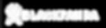 blackpanda logo white.png