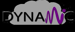 dynamic 2020  logo 1080 x 468.png