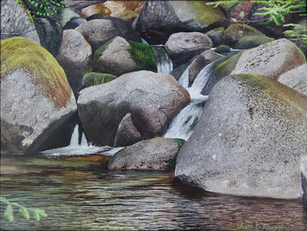 "Nature Rocks | 12"" x 16"" | Acrylic on Board"