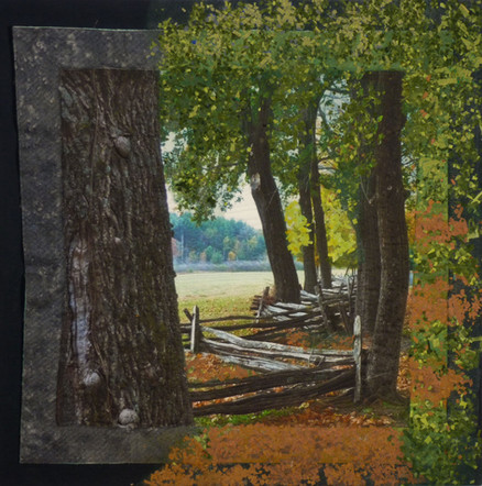 "Norfolk Fence | 15"" x 15"" 