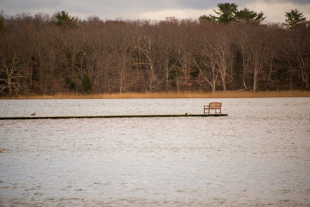 """The Bench 