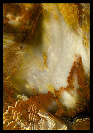 """The Multiplicity of Creation 