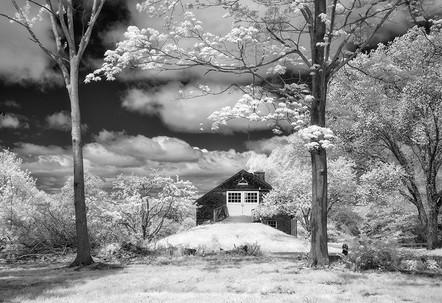 """Tranquility   24"""" x 36""""   Archival Digital Infrared Photography"""