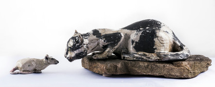 """The Game of Cat and Mouse 