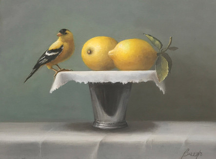 "Gold Finch and Lemons | 11"" x 14"" 