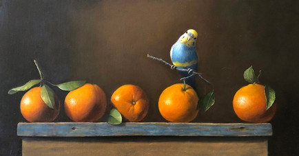 "Parakeet on Orange Branch | 12"" x 24"" | Oil on Canvas"