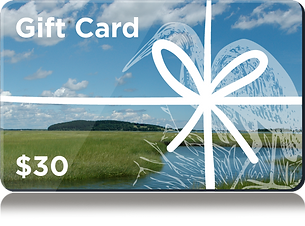 gift_card1.png