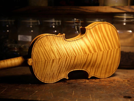 提琴的選料