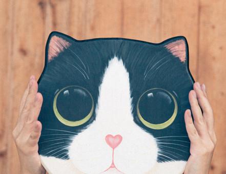 「好喜歡」為出發點 | 木頭愛上貓