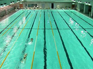 慈濟-50米游泳池.jpg