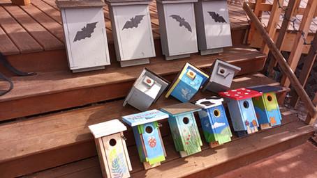Designing Designer Bird Houses