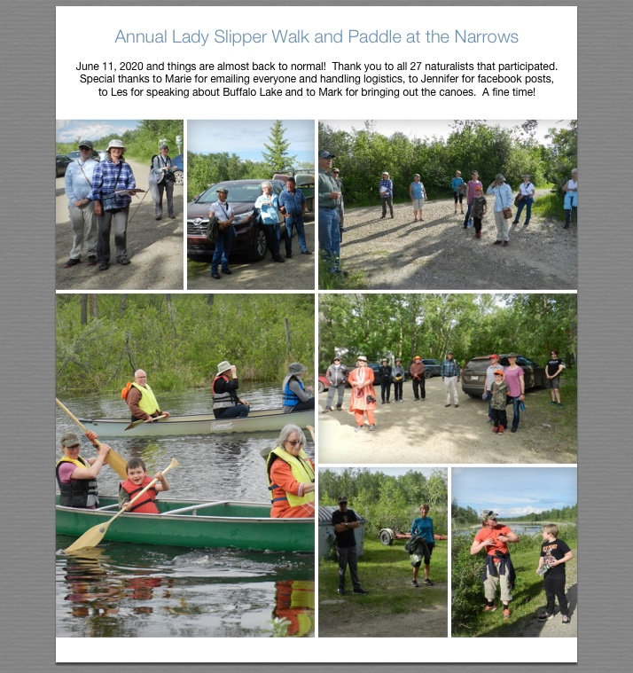 Lady Slipper Walk and Paddle at the Narr