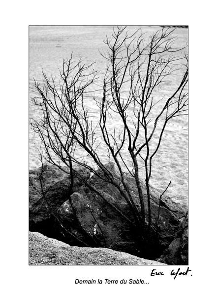 Anglet © Eric Lefort