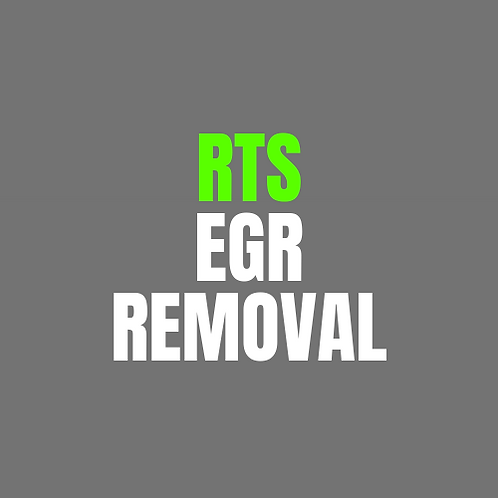 RTS Remap EGR Removal Only