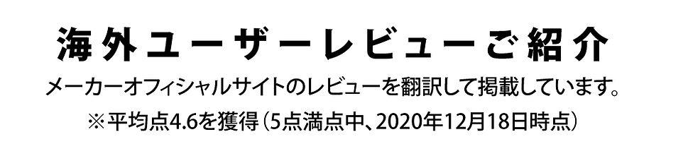 ブリュワーマグLP100.jpg
