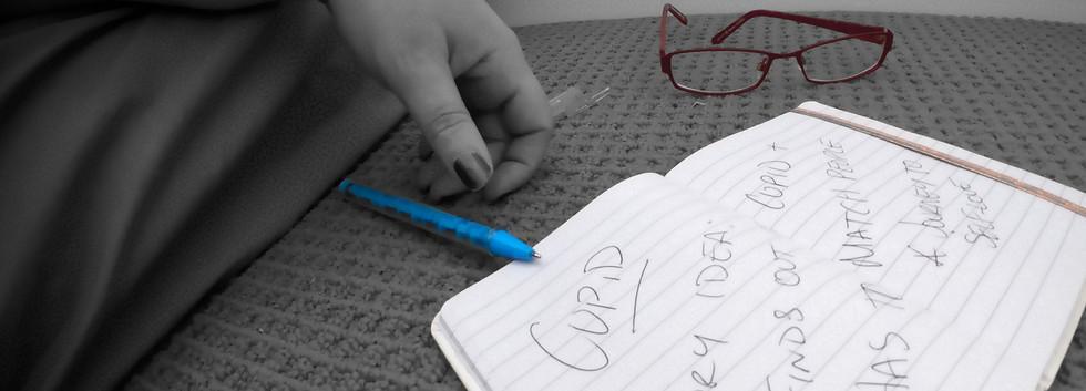 PHOTO 1 - the idea.jpg