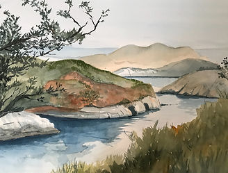 wc137-Point Lobos - China Cove.jpg