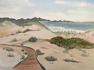 wc121-Asilomar Dunes.jpg