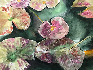 wc308-Pond Lillies.jpg