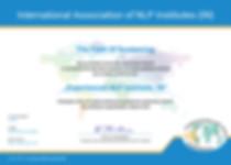 IN-Institute-Certificate.jpg
