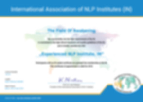 IN-Institute-Certificate.jpg