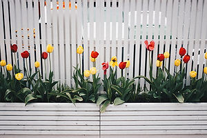 bloom-blossom-decoration-fence-preview.j