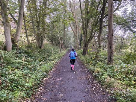 I ran an endurance marathon and 4 miles more… here is why…