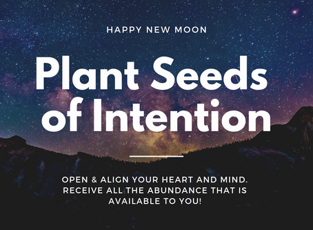 Plant Your Seeds of Intentions: Happy New Moon!
