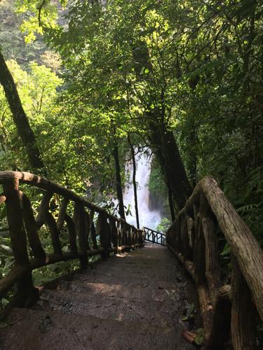 Costa RIca rainforest magic