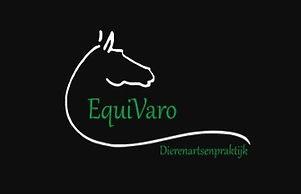 logo%20Equivaro_edited.jpg