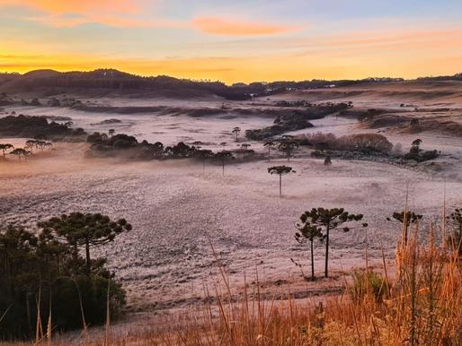 Santa Catarina registra temperaturas negativas e geada nesta quarta-feira