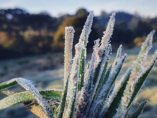 Ar frio de origem polar avança sobre SC