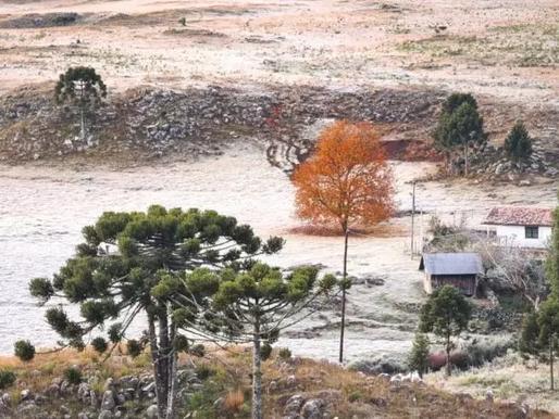 Massa de ar polar provoca mais um amanhecer com geada em SC