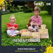 Posting_Partner_Dorflodn_2020_ÖDENBAUER