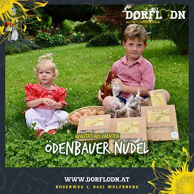 Posting_Partner_Dorflodn_2020_ÖDENBAUE