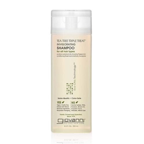 Tea Tree Shampoo - Giovanni