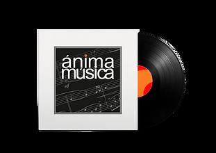 Vinyl Negro y Gris.png