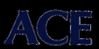 ACE_Original_Case-202008-removebg.png