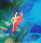 just hangin on a leaf w wtrmk.jpg