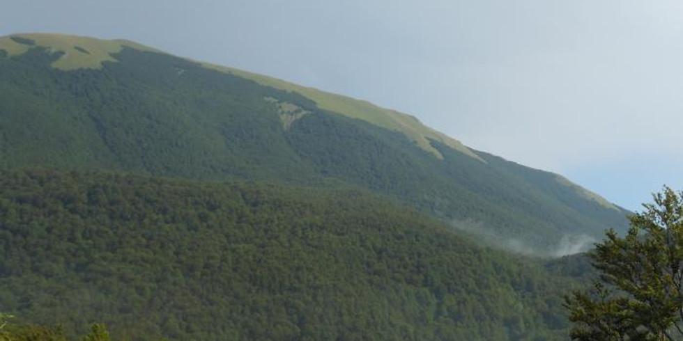 Escursione sul monte Grattaculo (1)