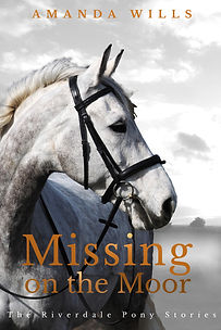 Missing on the Moor.jpg