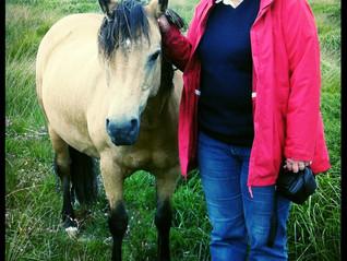 In the spotlight - pony book author Victoria Eveleigh