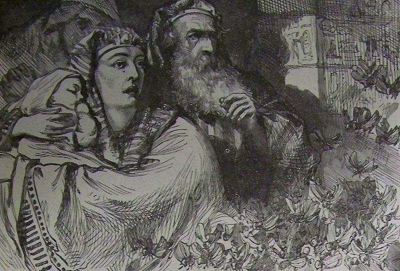 The Plague of Locusts, illustration from the 1890 Holman Bible