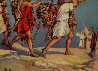 Shlach-Lecha - Weekly Torah Portion