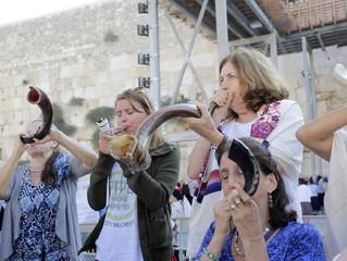 Shoftim - weekly Torah portion